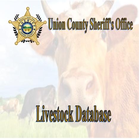 Livestock Database3.jpg